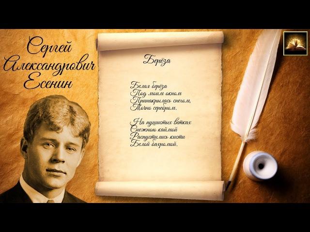 Стихотворение С.А. Есенин Берёза (Стихи Русских Поэтов) Аудио Стихи Слушать Онлайн