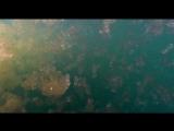 Saint Etienne - The Sea (PFM Mix)