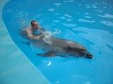 Плавание с Дельфинами=)