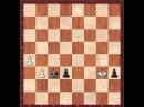 Шахматы. Эндшпиль - Блуждающий квадрат