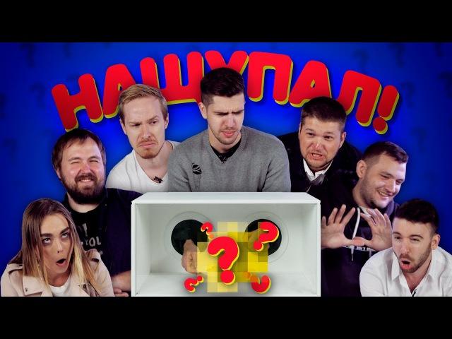 КАЖЕТСЯ, НАЩУПАЛ 5: Wylsacom, Давыдов, Усачев, Юджин Сагаз, Приятный Ильдар, Кузьма, Маха Горячёва