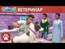 Официальный трейлер игрового процесса «The Sims 4 Кошки и собаки»: ветеринар