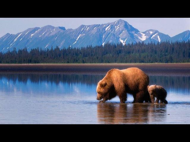 Аляска снова может войти в состав России !? Загадки человечества - (15.08.2017)