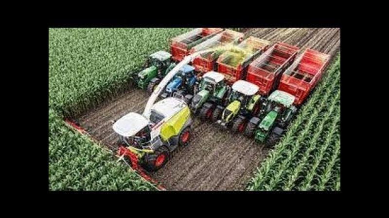 Рекорд Гинесса Самый большой комбайн в мире для сбора кукурузы