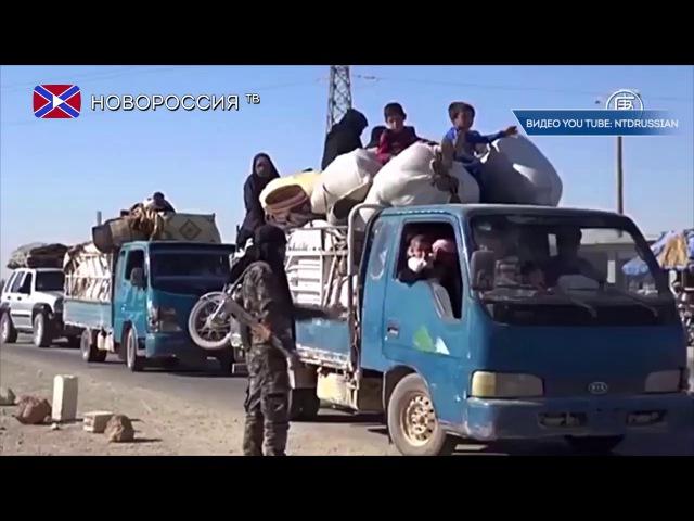 США создают из террористов новые вооруженные формирования в Сирии