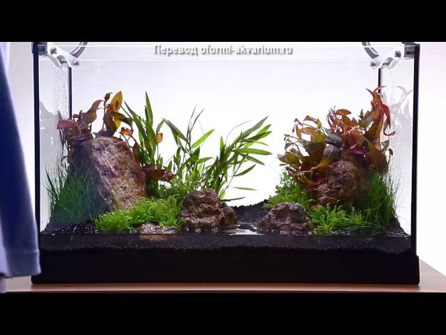 Интерьер 35 литрового аквариума Зеленая долина
