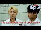 The weird Hamster in VIXX family