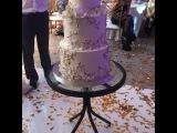 Молодожены Александра Артёмова и Евгений Кузин разрезают свадебный торт