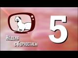 Неделя с Горностаем №5, 05.12.17