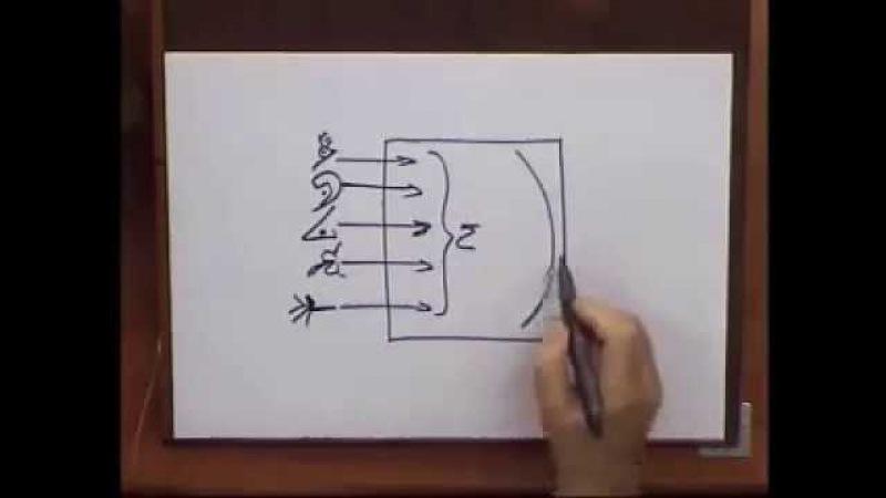 М. Лайтман - Схема восприятия реальности посредством органов чувств и ума