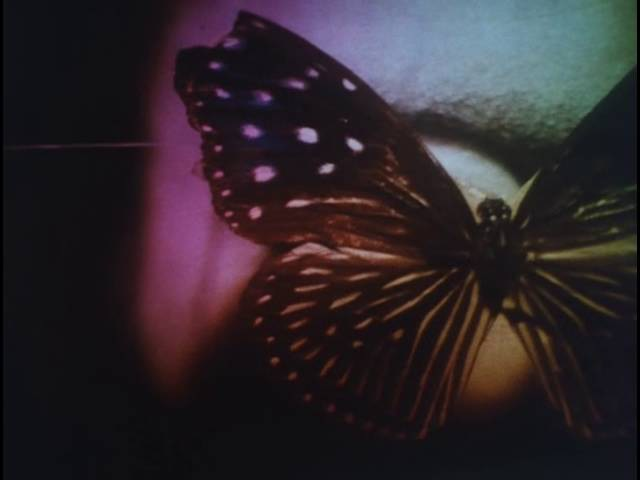Shuji Terayama - Butterfly Dress Pledge (1974)