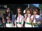 170609 Twice занимают первое место на Music Bank и получают свою десятую награду с Signal.