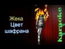 Евгений Григорьев (Жека) - Цвет шафрана ( караоке )