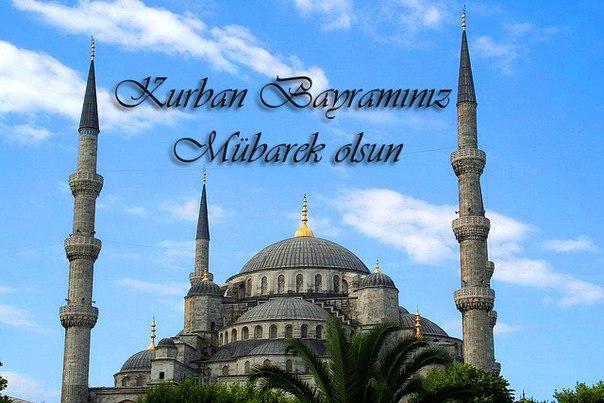Высказывания картинках, открытки с курбан байрам на турецком языке
