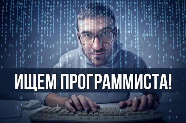 ищу программиста в москве