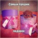 Мария Мирошникова фото #48