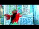 Davron Ahmedov - Rayhon (HD Clip) (