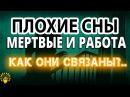 ⚜ Плохие сны, Живые мертвецы и Работа ⚜ Андрей Дуйко ⚜ Школа Кайлас