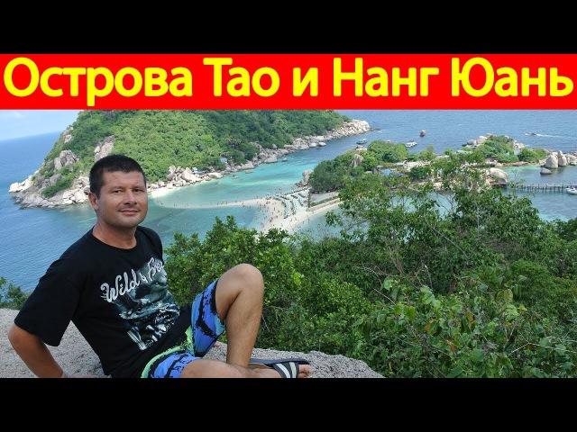 Экскурсия на острова Тао (Koh Tao) и остров Нанг Юань (Koh Nangyuan) 764