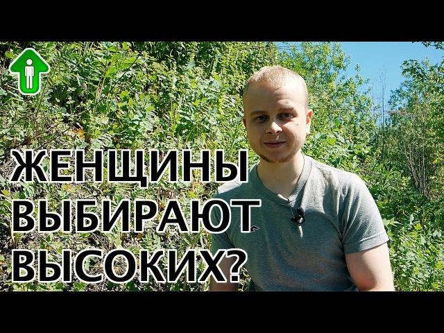 Женщины выбирают высоких? | Ярасту ru