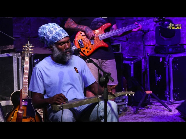 (OFFICIAL) Corey Harris Band @ Accadia Blues - 24/07/2015