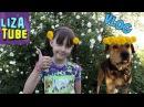 ВЛОГ Гуляем, кормим бездомных котиков Наш ПЕС Тарзан ест одуванчики 🌸 LizaTube