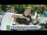Расплескалась синева: Журналист НТВ получил по лицу в прямом эфире.