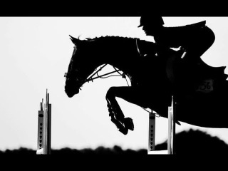 My Demons || Equine Jumping Music Video ||