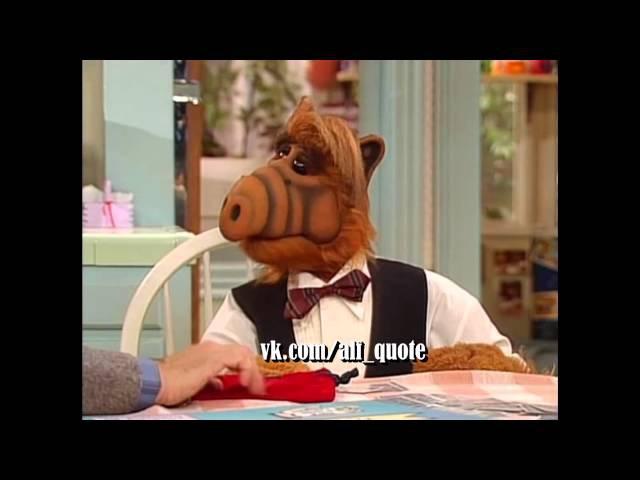 Alf Quote Season 3 Episode 12 Альф и Вилли Фокус с часами