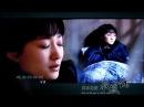 来不及说我爱你MV 是我在做多情种 钟汉良李小冉