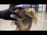 Блонд с глубиной у корней