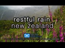 """Restful Rain in New Zealand's Milford Sound"" 1 HR 4K Nature Relaxation™ Ambient UHD Film"