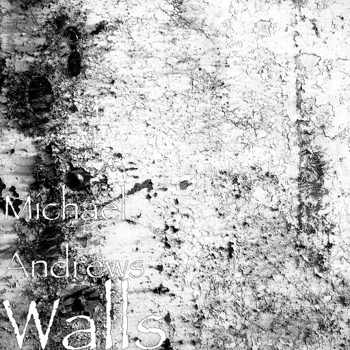 Michael Andrews альбом Walls