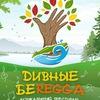 ДИВНЫЕ БЕРЕГА - фестиваль позитива и добра!