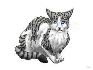 коты воители картинки искра