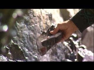 Дом музей камней, экскурсия в горы на поиск минералов