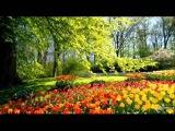 Мелодии для души. Весна идет!