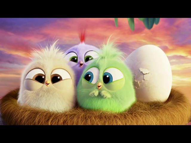 Едвард Ґріґ (Гріг) - Пташка /Эдвард Григ - Птичка/ Angry Birds