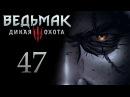 Ведьмак 3 прохождение игры на русском Знакомство с Ивасиком 47