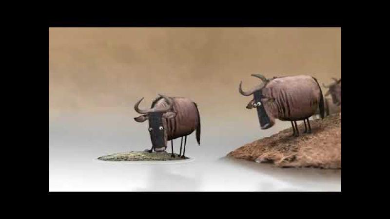 Антилопа Гну Смешной мультик Antelope Gnu Funny cartoon