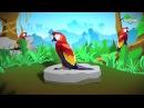 Планета попугаев Parrot planet 720p