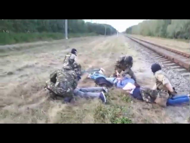 Четверо иракцев пытались пробраться через белорусско польскую границу в Брестс