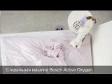 Тайная жизнь домашних животных. Bosch