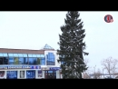 Новогодняя ель в Малоярославце 2017