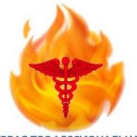 Логотип Первая Профессиональная Тендерная Компания
