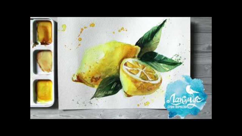 Как нарисовать лимон акварелью 365 арт дней День 9