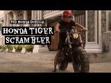 HONDA TIGER SCRAMBLER (BIG HONDA GORILLA)