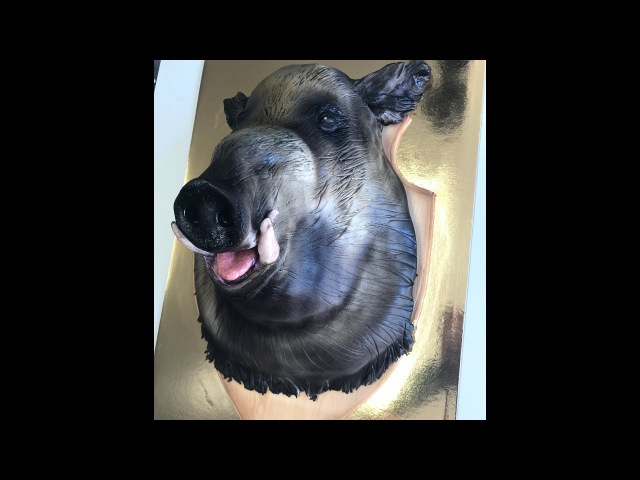 Kricky Cakes Decoration airbrushed boar cake tutorial