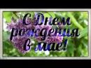 С Днем рождения в мае ❖ Красивая видео открытка