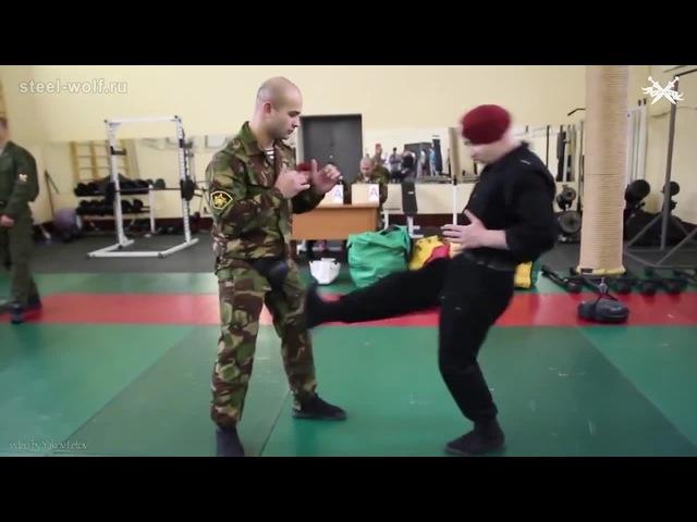 Приемы рукопашного боя / Melee combat techniques
